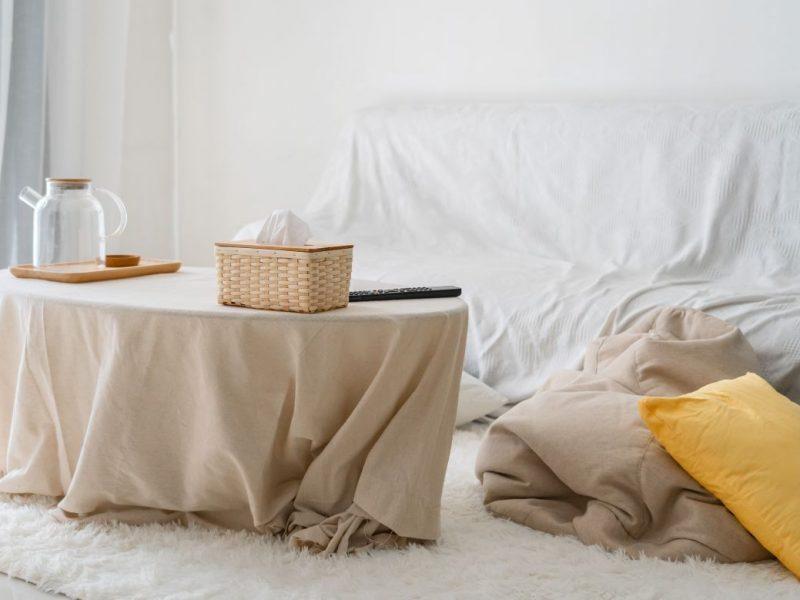 Atentia nu este suficienta: iata ce huse pentru canapele sa alegi ca sa le protejezi!
